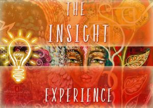 The Insight Experience